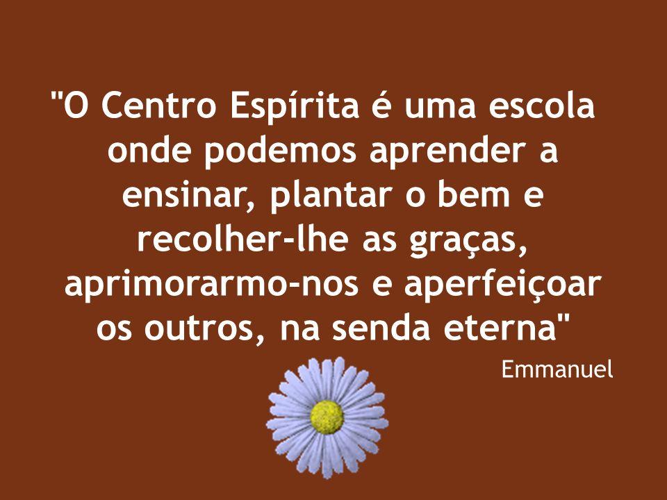 O Centro Espírita é uma escola onde podemos aprender a ensinar, plantar o bem e recolher-lhe as graças, aprimorarmo-nos e aperfeiçoar os outros, na senda eterna
