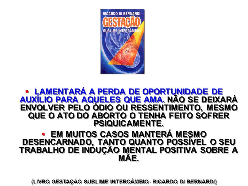 (LIVRO GESTAÇÃO SUBLIME INTERCÂMBIO- RICARDO DI BERNARDI)