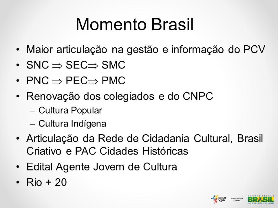 Momento Brasil Maior articulação na gestão e informação do PCV