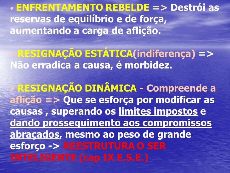 ENFRENTAMENTO REBELDE => Destrói as reservas de equilíbrio e de força, aumentando a carga de aflição.
