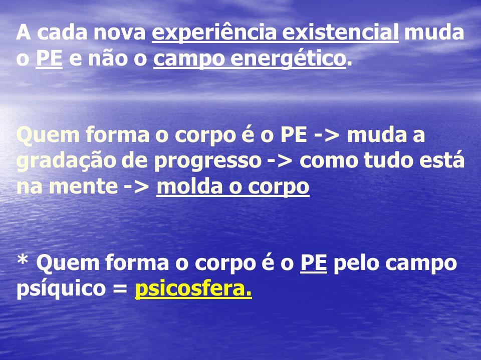 A cada nova experiência existencial muda o PE e não o campo energético.
