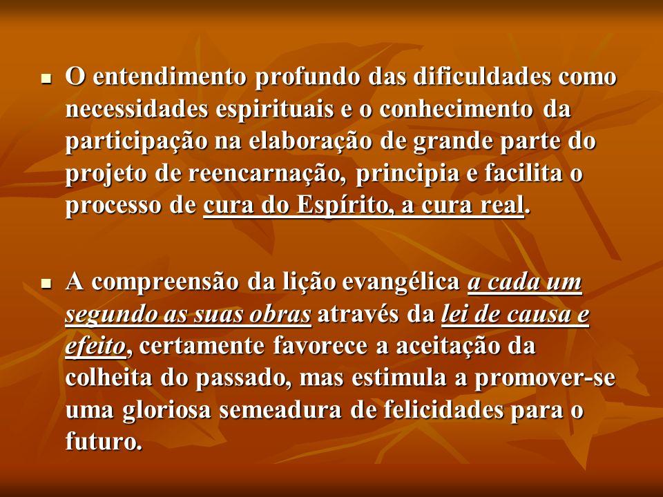 O entendimento profundo das dificuldades como necessidades espirituais e o conhecimento da participação na elaboração de grande parte do projeto de reencarnação, principia e facilita o processo de cura do Espírito, a cura real.