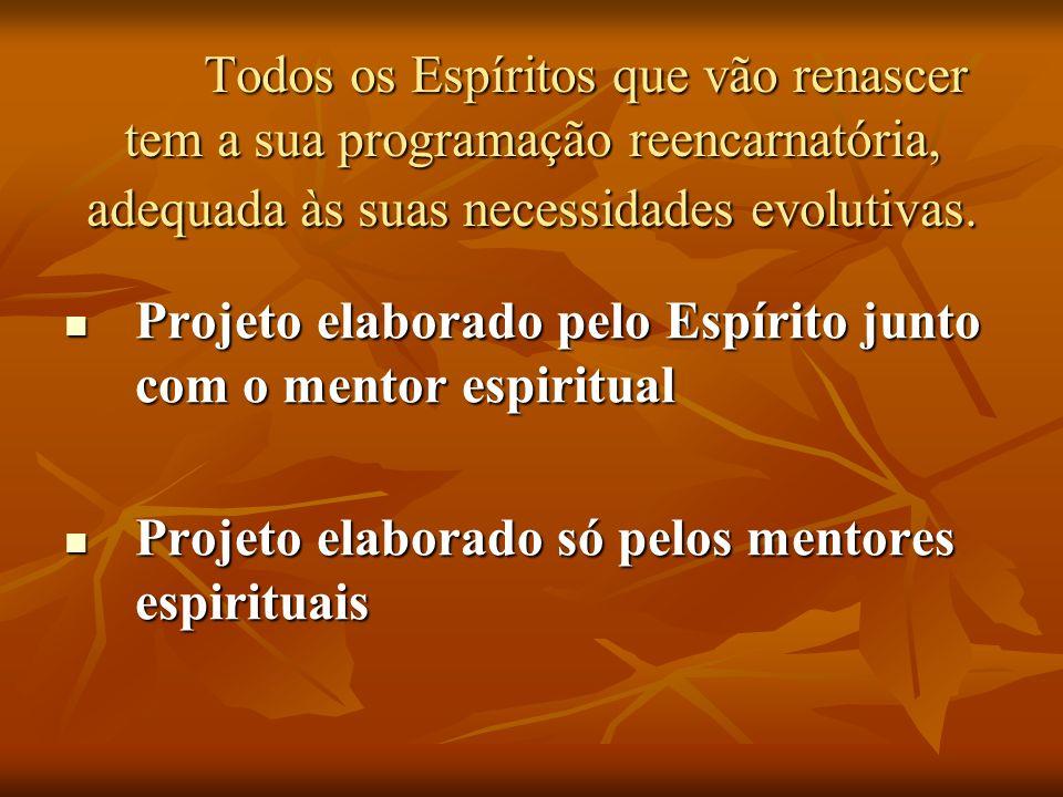 Projeto elaborado pelo Espírito junto com o mentor espiritual