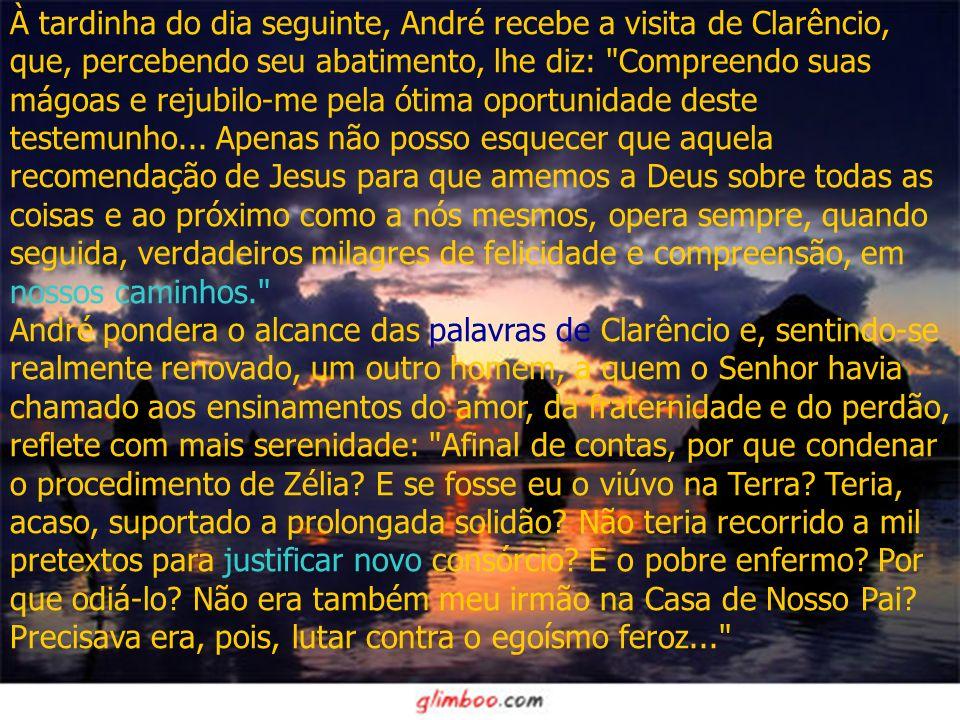 À tardinha do dia seguinte, André recebe a visita de Clarêncio, que, percebendo seu abatimento, lhe diz: Compreendo suas mágoas e rejubilo-me pela ótima oportunidade deste testemunho...