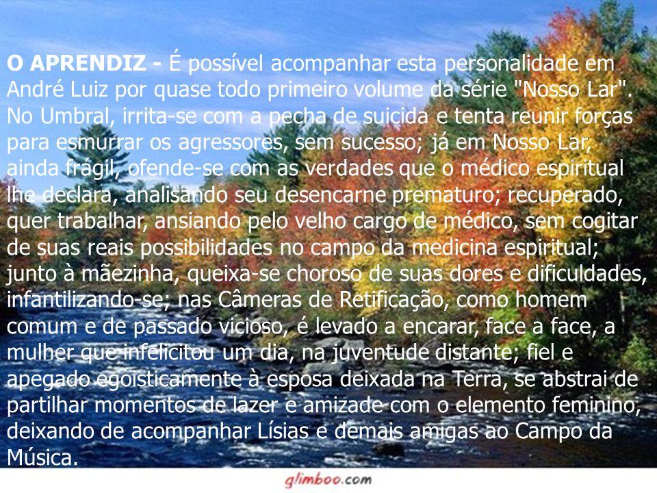 O APRENDIZ - É possível acompanhar esta personalidade em André Luiz por quase todo primeiro volume da série Nosso Lar .