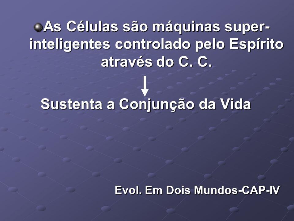 As Células são máquinas super-inteligentes controlado pelo Espírito através do C. C.