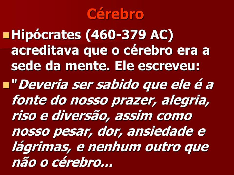 Cérebro Hipócrates (460-379 AC) acreditava que o cérebro era a sede da mente. Ele escreveu: