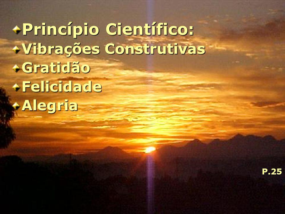 Princípio Científico: