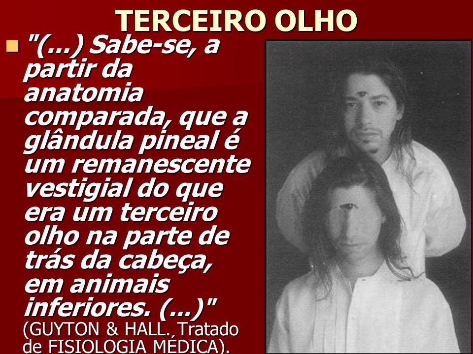 TERCEIRO OLHO