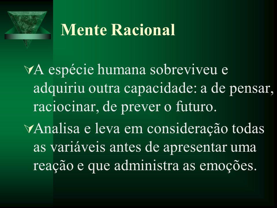 Mente RacionalA espécie humana sobreviveu e adquiriu outra capacidade: a de pensar, raciocinar, de prever o futuro.