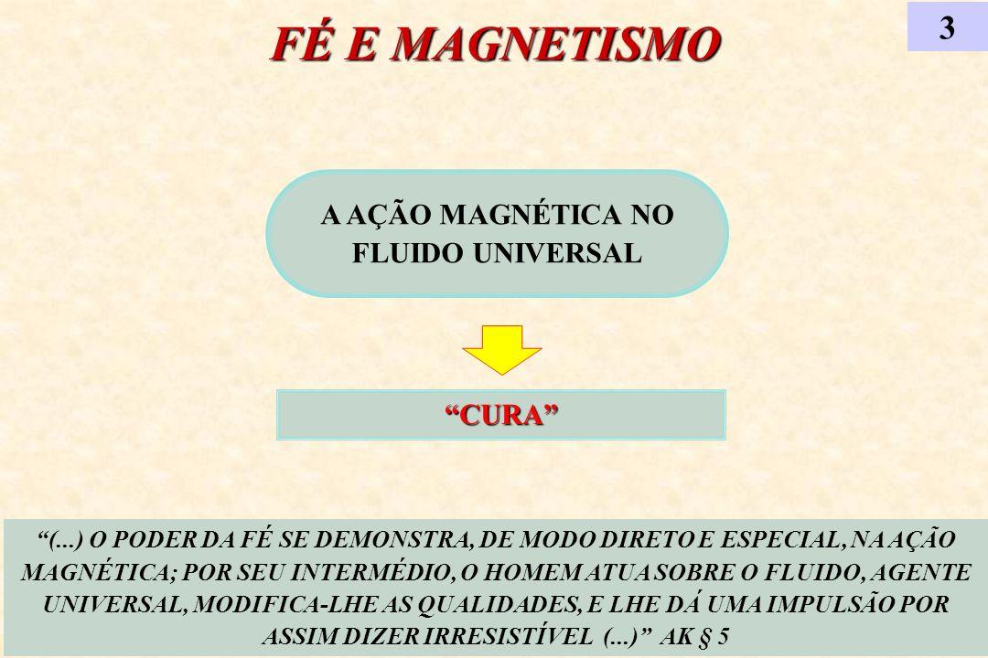 A AÇÃO MAGNÉTICA NO FLUIDO UNIVERSAL