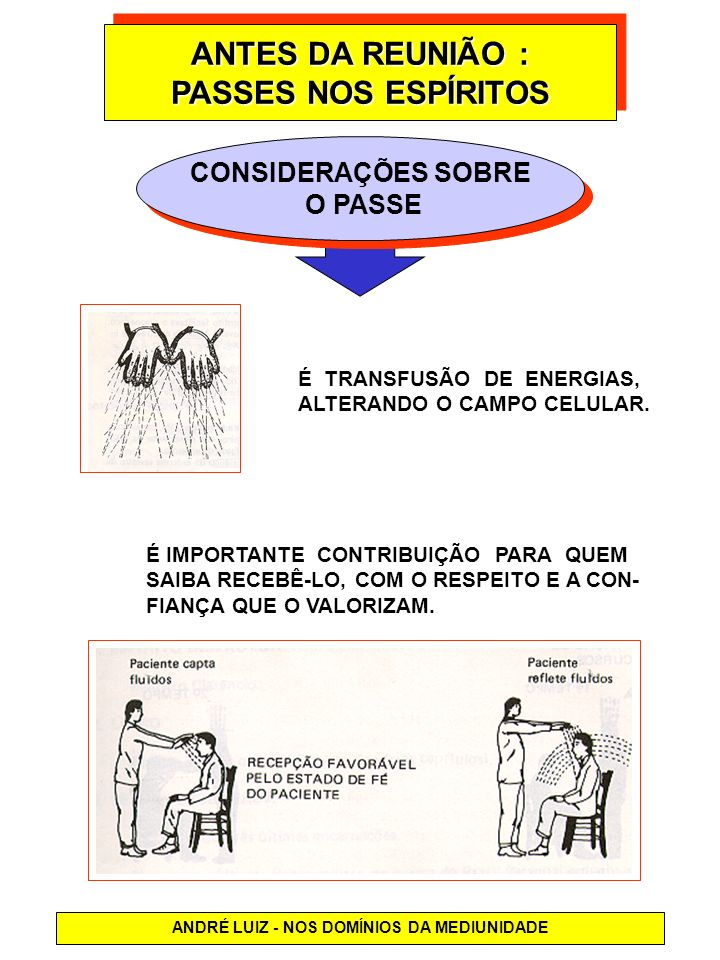 ANDRÉ LUIZ - NOS DOMÍNIOS DA MEDIUNIDADE