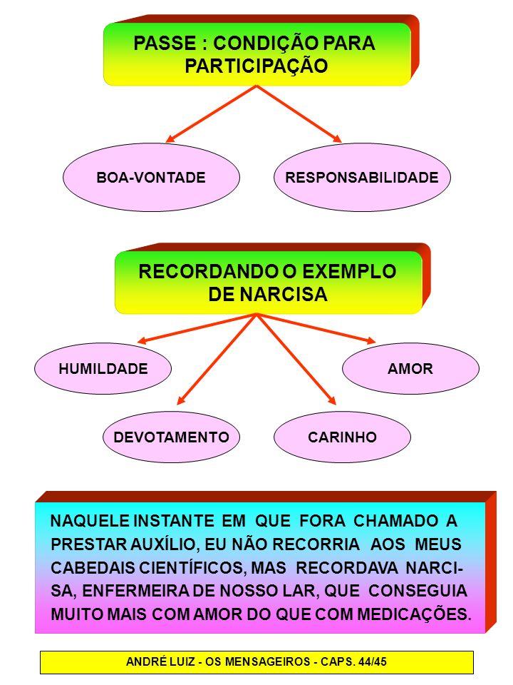 ANDRÉ LUIZ - OS MENSAGEIROS - CAPS. 44/45