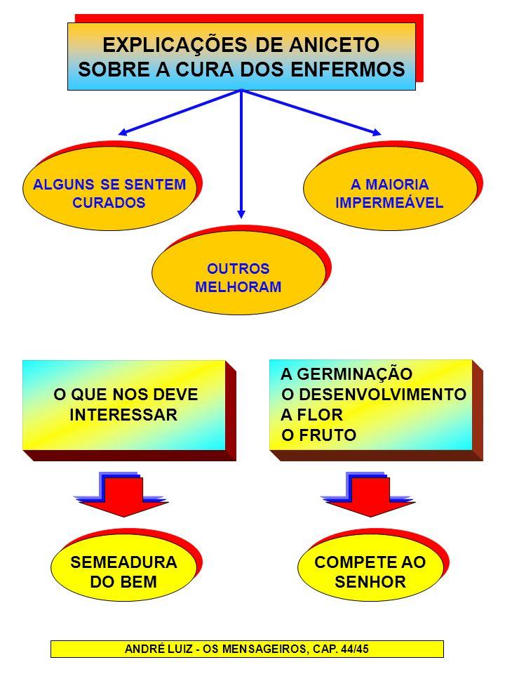 EXPLICAÇÕES DE ANICETO SOBRE A CURA DOS ENFERMOS