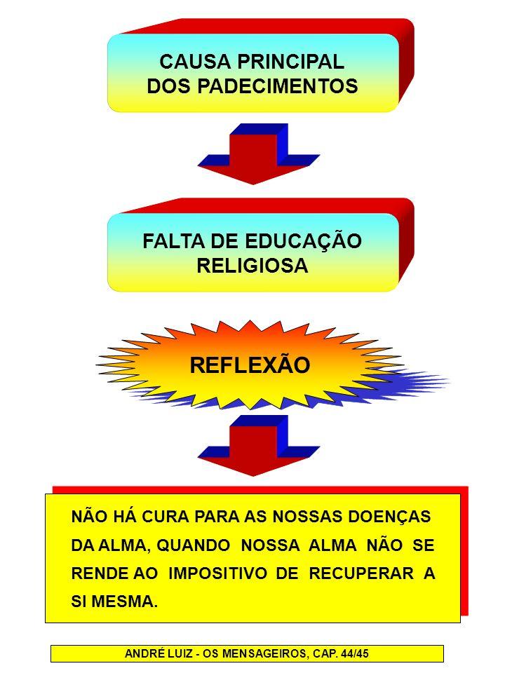 ANDRÉ LUIZ - OS MENSAGEIROS, CAP. 44/45