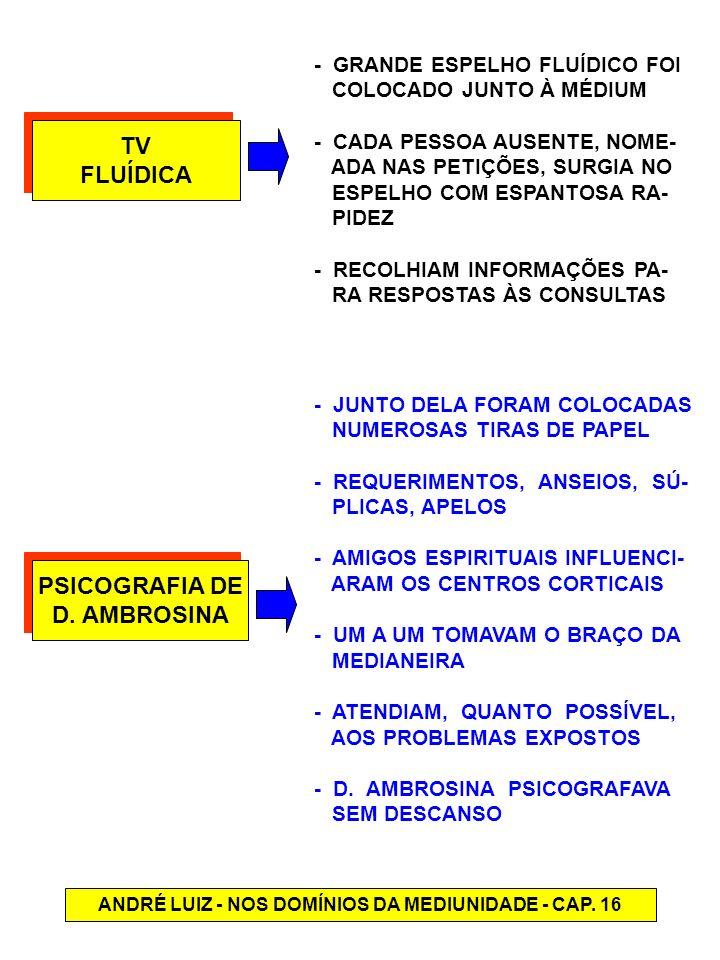 ANDRÉ LUIZ - NOS DOMÍNIOS DA MEDIUNIDADE - CAP. 16