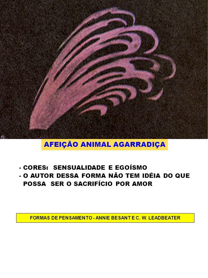 AFEIÇÃO ANIMAL AGARRADIÇA