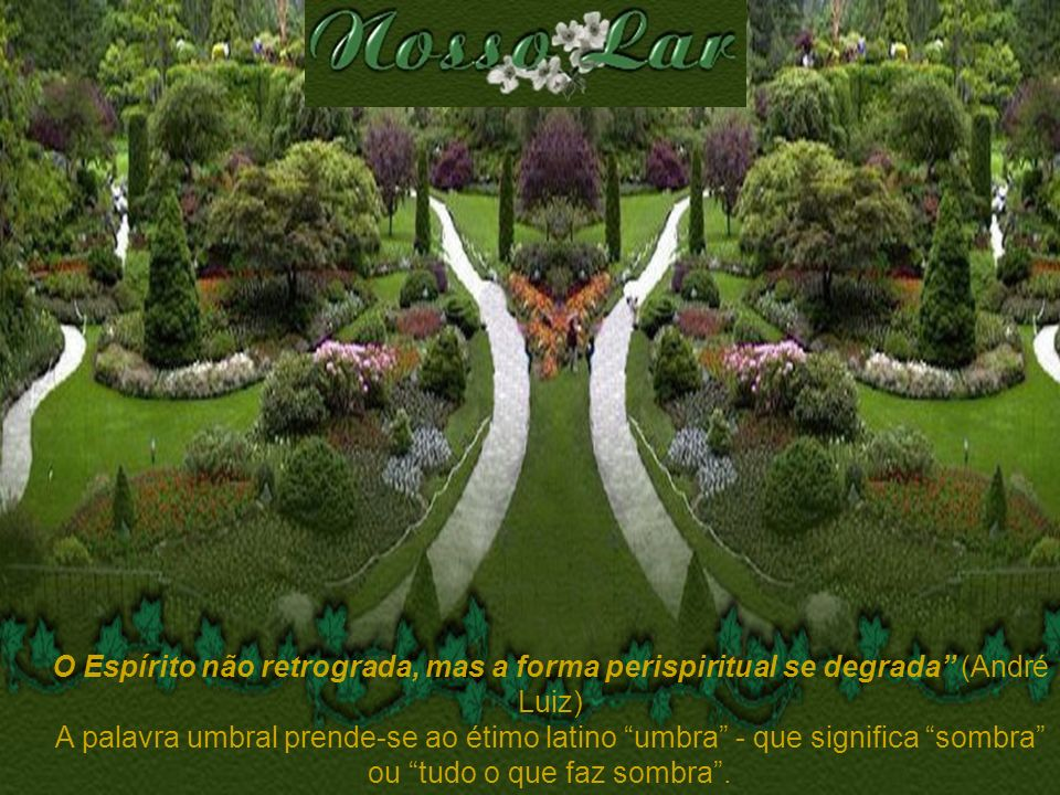 O Espírito não retrograda, mas a forma perispiritual se degrada (André Luiz)