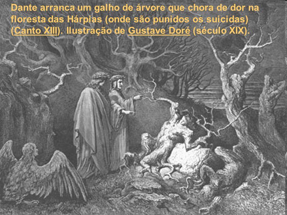 Dante arranca um galho de árvore que chora de dor na floresta das Hárpias (onde são punidos os suicidas) (Canto XIII).