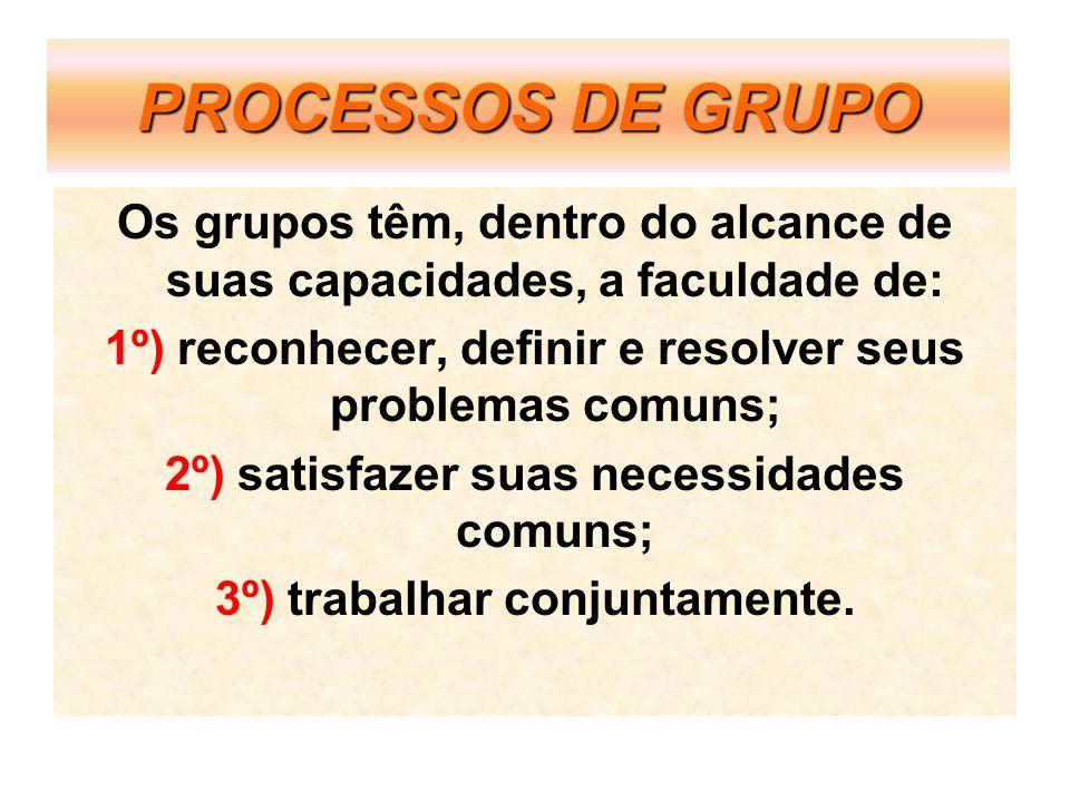 PROCESSOS DE GRUPOOs grupos têm, dentro do alcance de suas capacidades, a faculdade de: 1º) reconhecer, definir e resolver seus problemas comuns;
