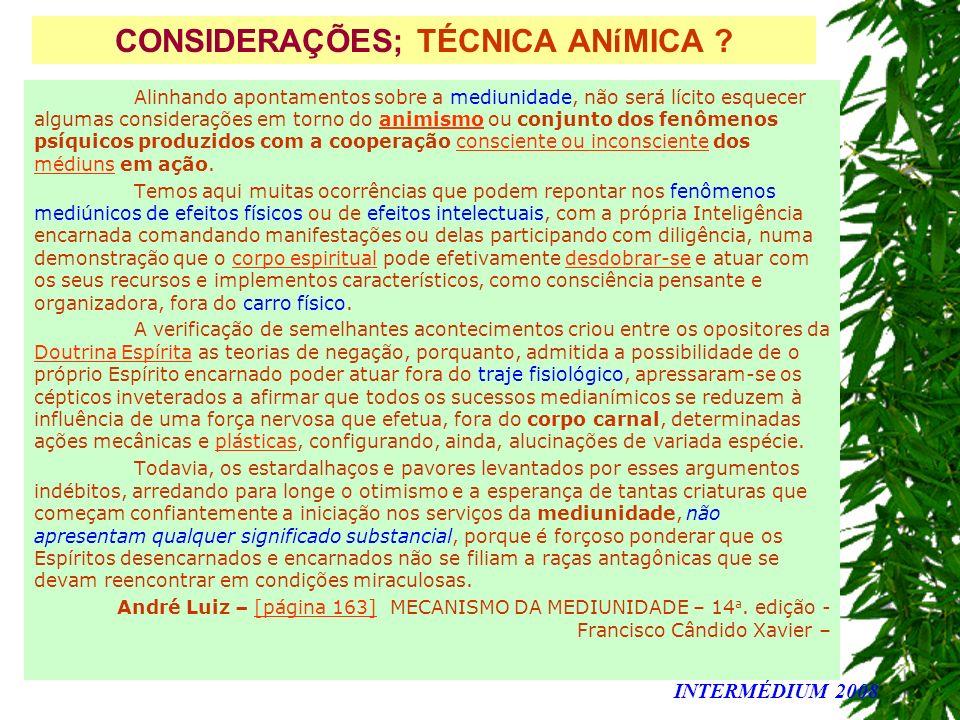 CONSIDERAÇÕES; TÉCNICA ANíMICA