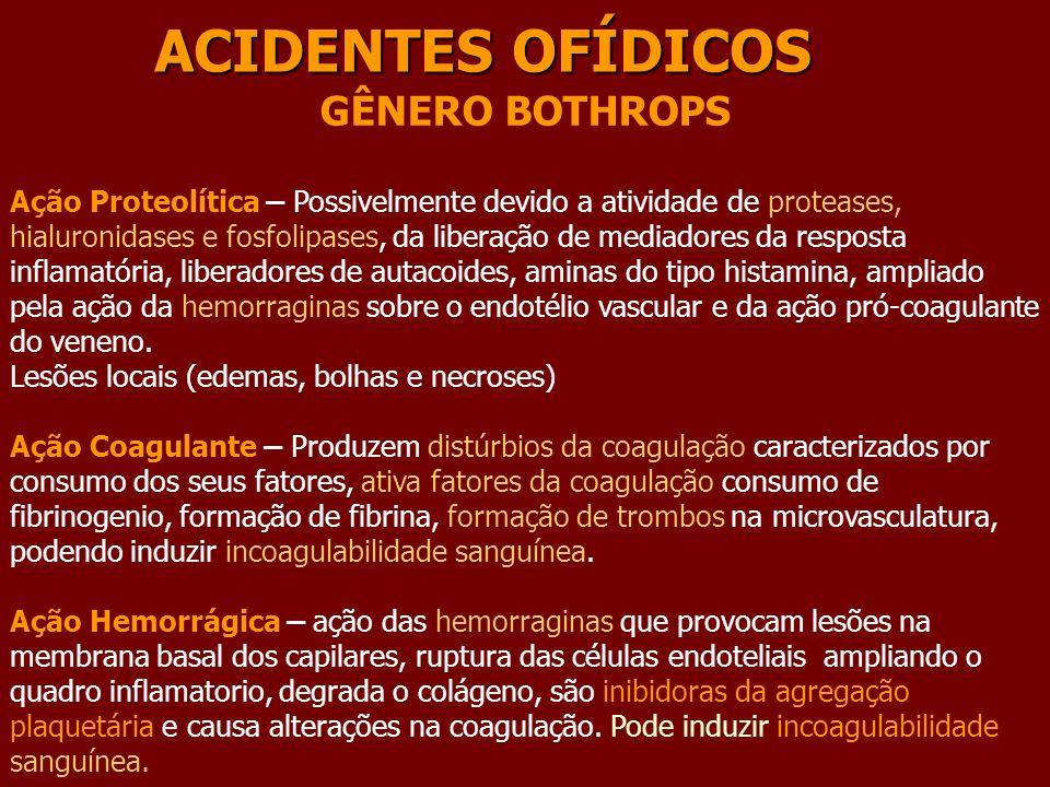 ACIDENTES OFÍDICOS GÊNERO BOTHROPS