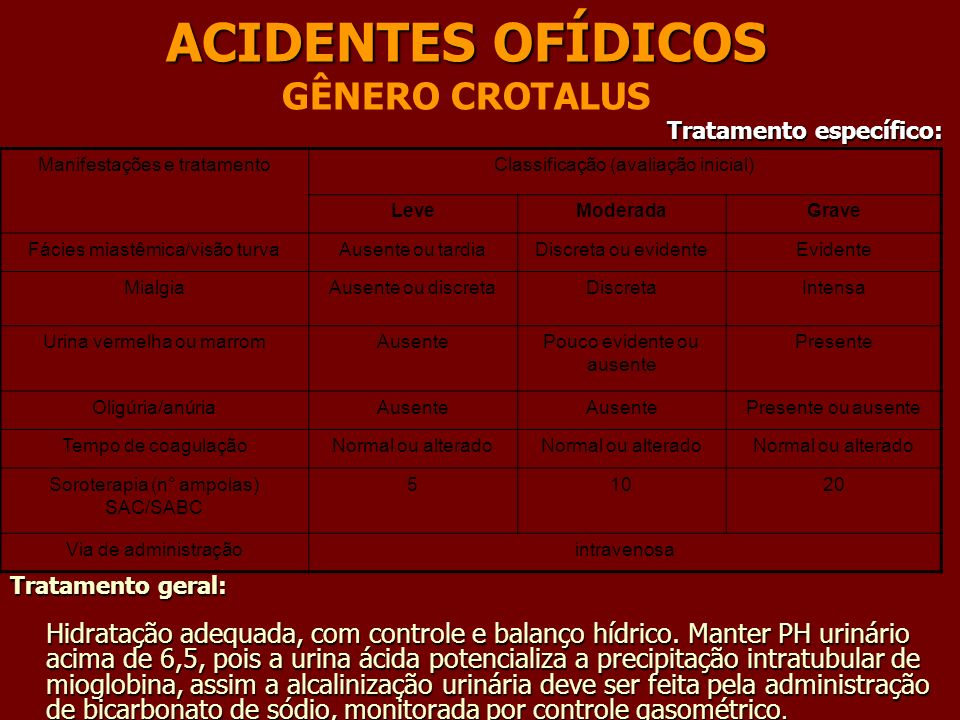 ACIDENTES OFÍDICOS GÊNERO CROTALUS