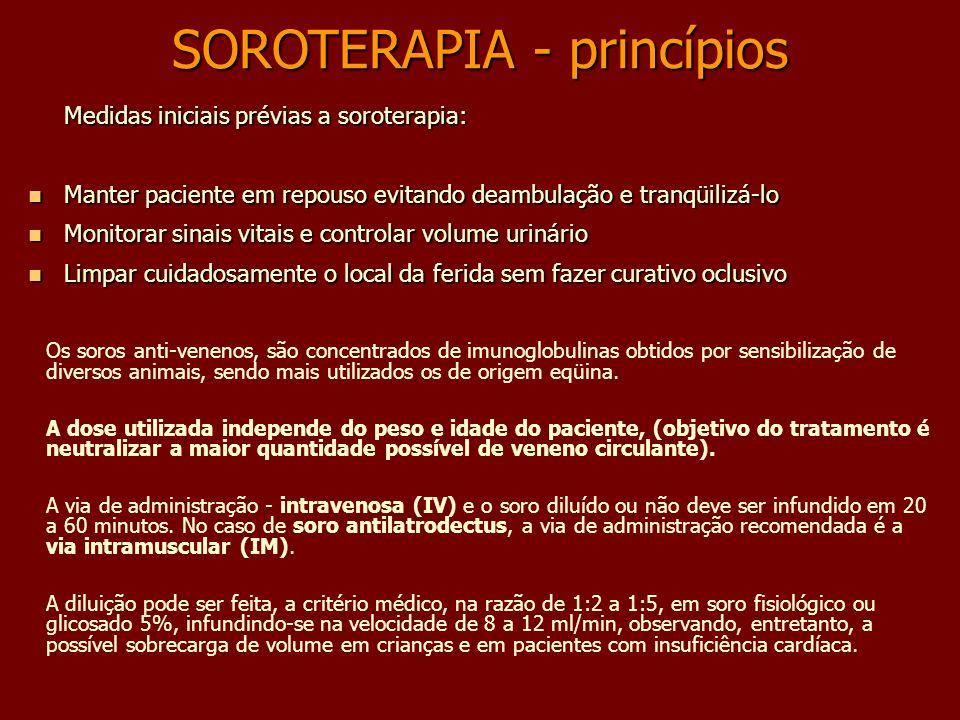 SOROTERAPIA - princípios