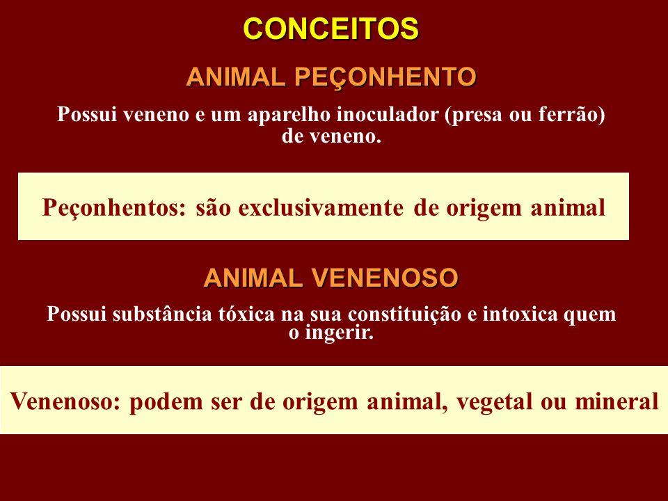 CONCEITOS ANIMAL PEÇONHENTO ANIMAL VENENOSO