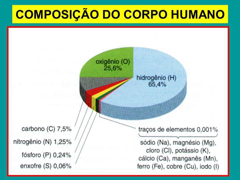 COMPOSIÇÃO DO CORPO HUMANO