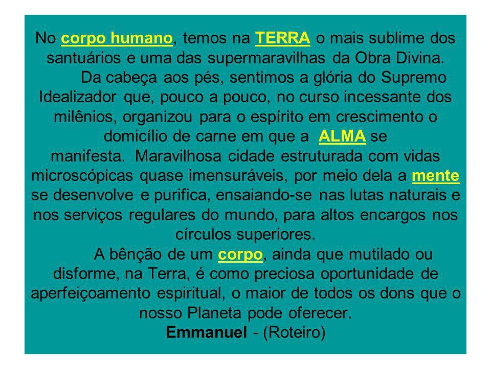 No corpo humano, temos na TERRA o mais sublime dos santuários e uma das supermaravilhas da Obra Divina.