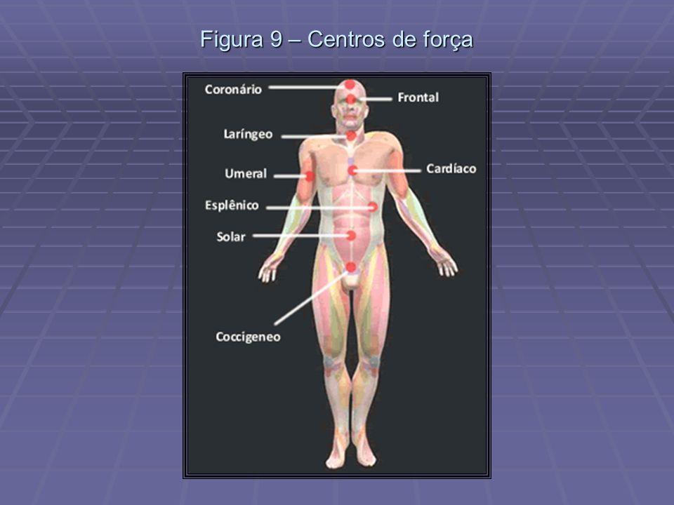 Figura 9 – Centros de força