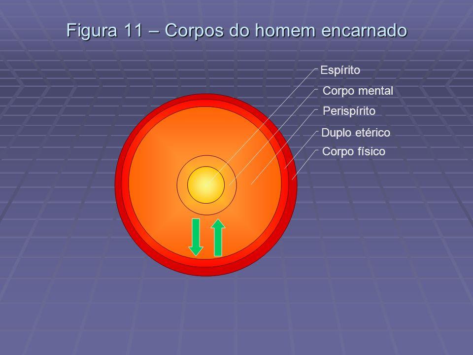 Figura 11 – Corpos do homem encarnado
