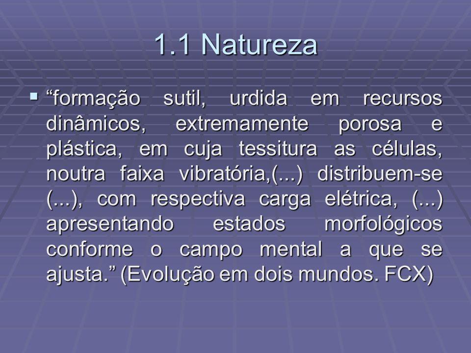 1.1 Natureza