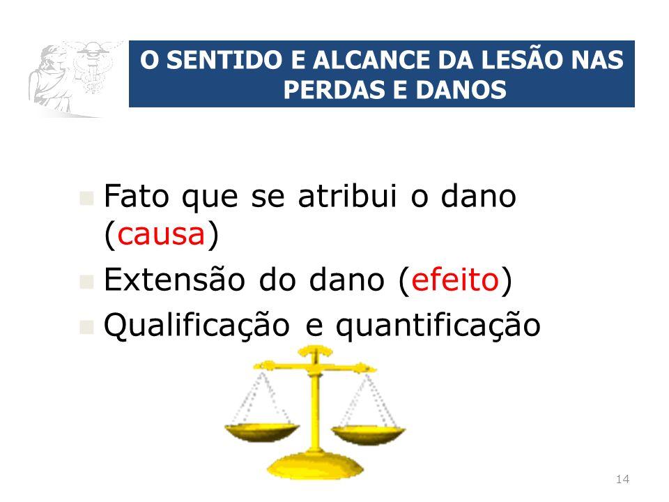 O SENTIDO E ALCANCE DA LESÃO NAS PERDAS E DANOS