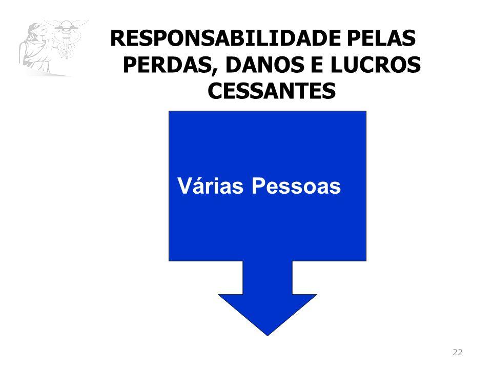 RESPONSABILIDADE PELAS PERDAS, DANOS E LUCROS CESSANTES