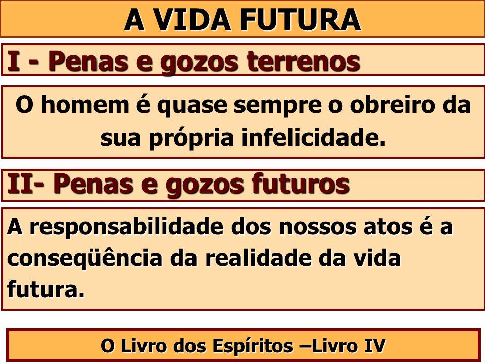 A VIDA FUTURA I - Penas e gozos terrenos II- Penas e gozos futuros