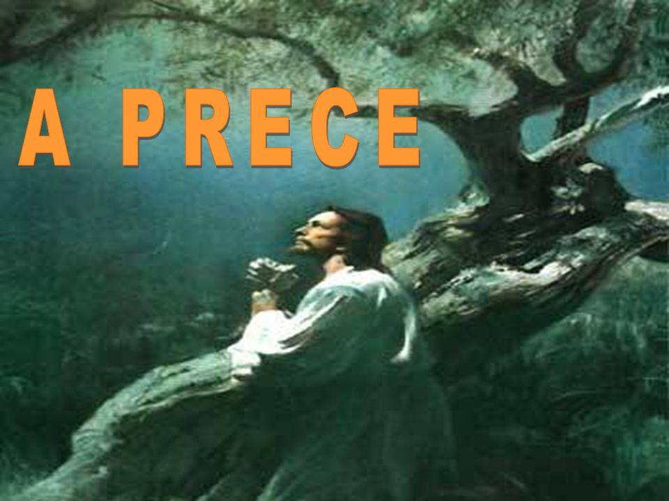 A PRECE