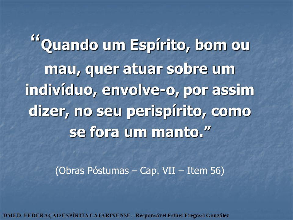 (Obras Póstumas – Cap. VII – Item 56)