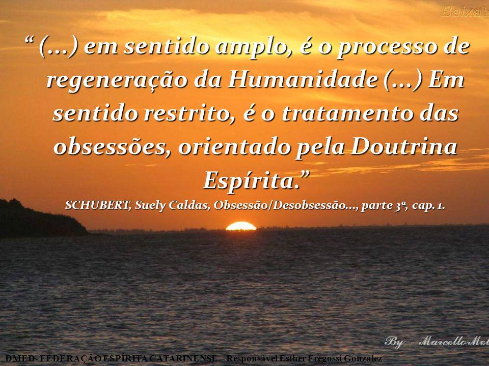(. ) em sentido amplo, é o processo de regeneração da Humanidade (