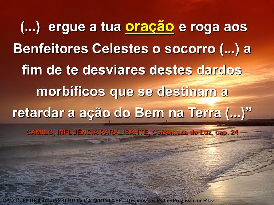 CAMILO, INFLUÊNCIA PARALISANTE, Correnteza de Luz, cap. 24