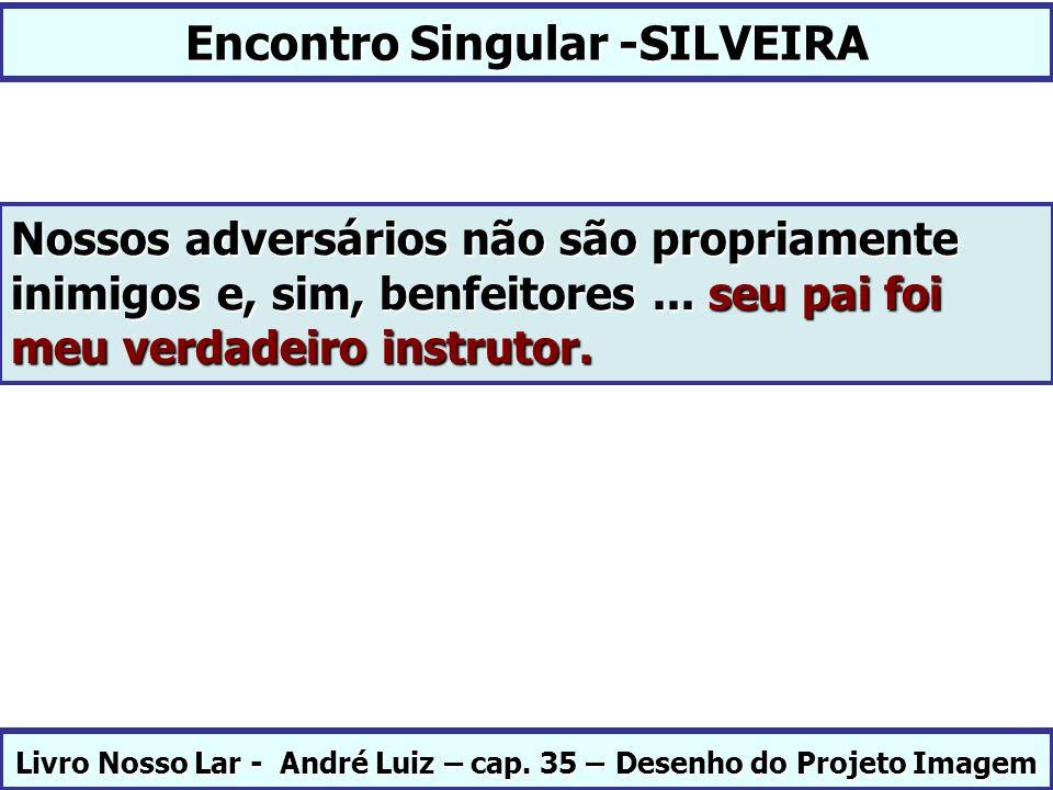 Encontro Singular -SILVEIRA