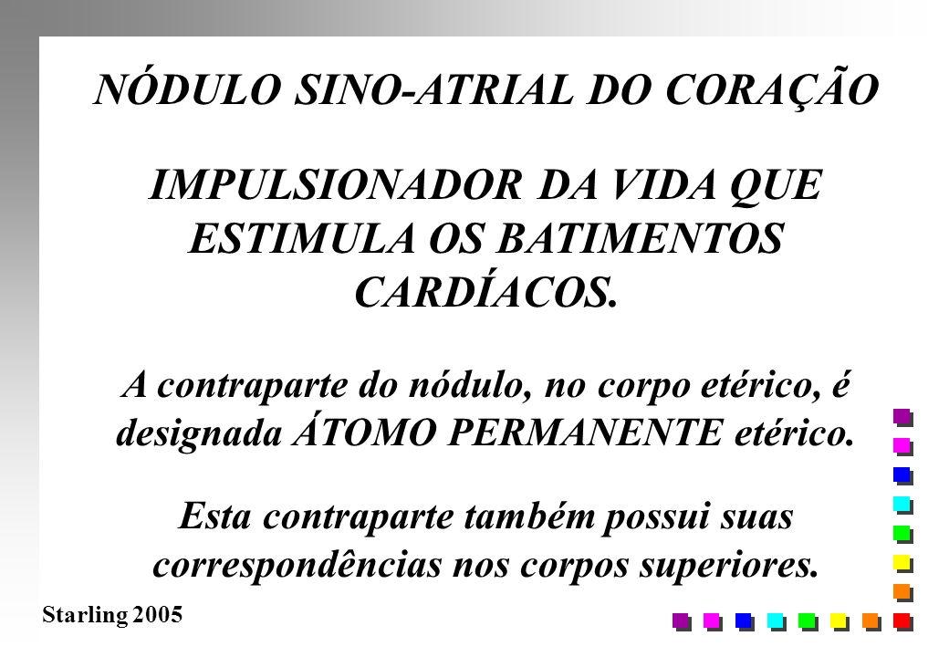 NÓDULO SINO-ATRIAL DO CORAÇÃO