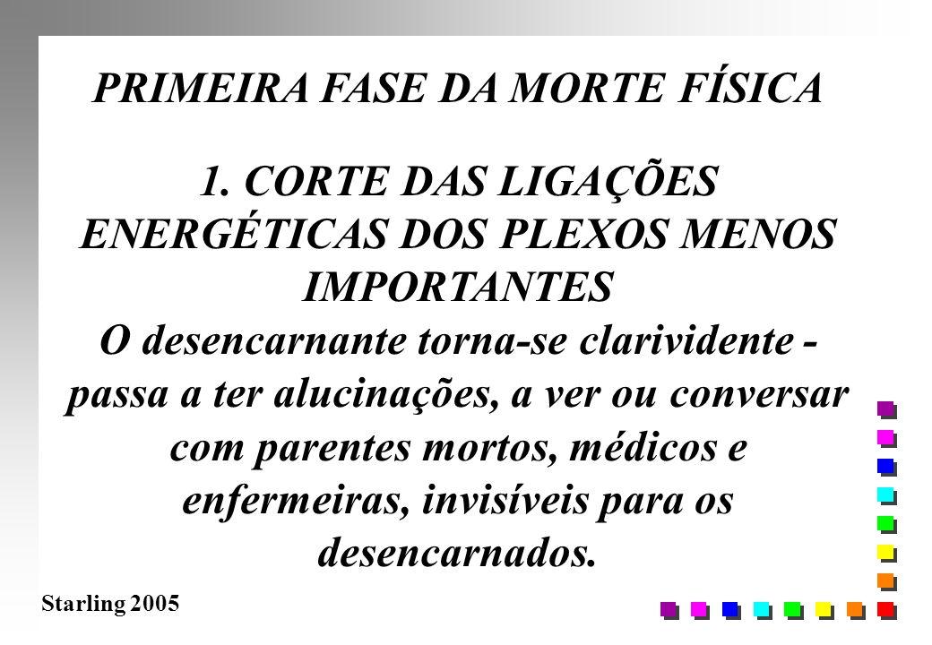 PRIMEIRA FASE DA MORTE FÍSICA