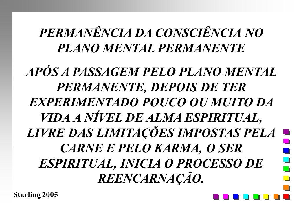 PERMANÊNCIA DA CONSCIÊNCIA NO PLANO MENTAL PERMANENTE
