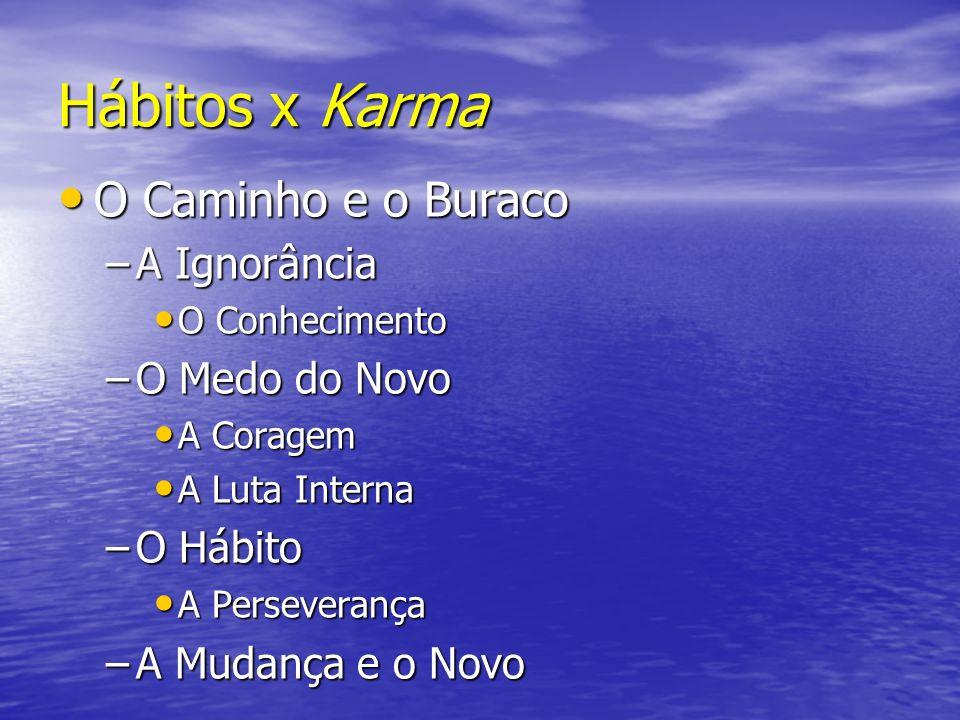 Hábitos x Karma O Caminho e o Buraco A Ignorância O Medo do Novo