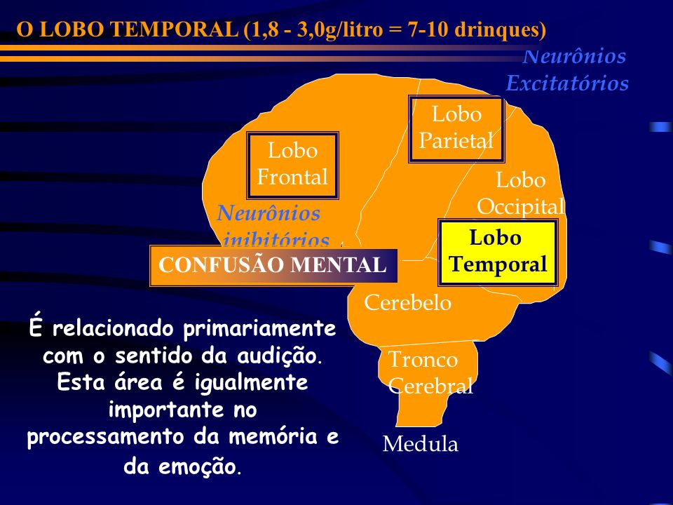 O LOBO TEMPORAL (1,8 - 3,0g/litro = 7-10 drinques)
