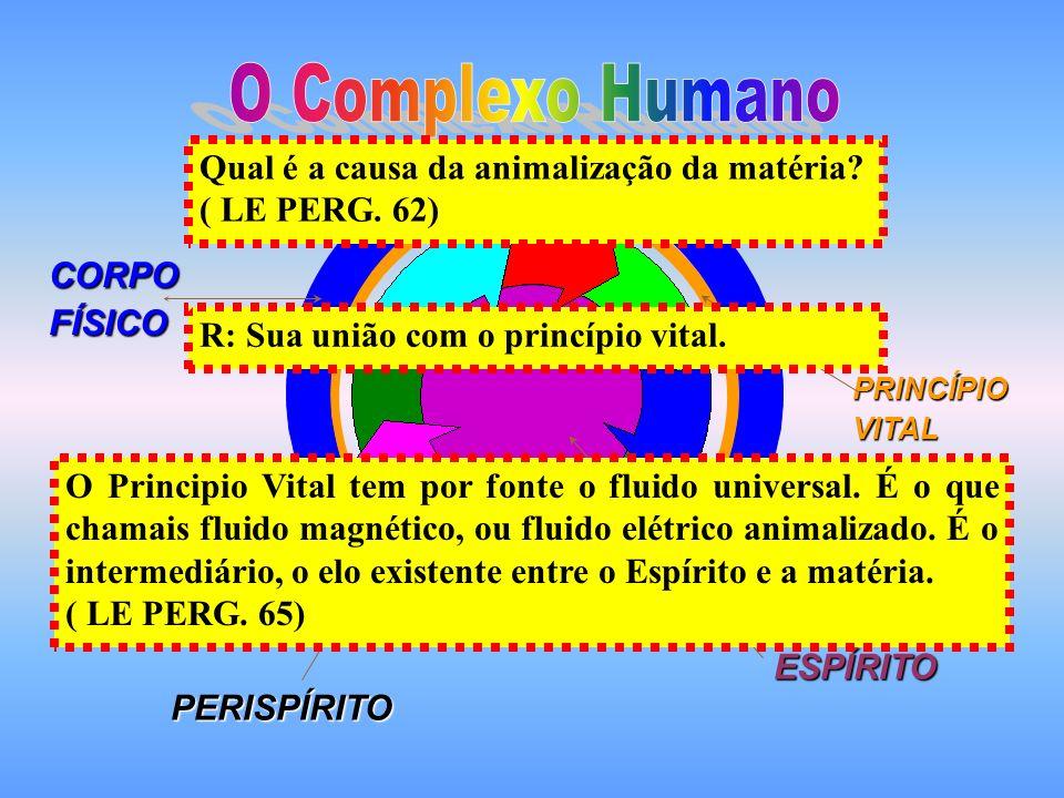 O Complexo Humano Qual é a causa da animalização da matéria