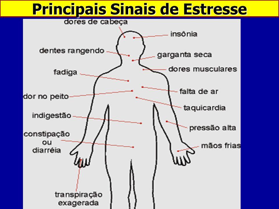 Principais Sinais de Estresse