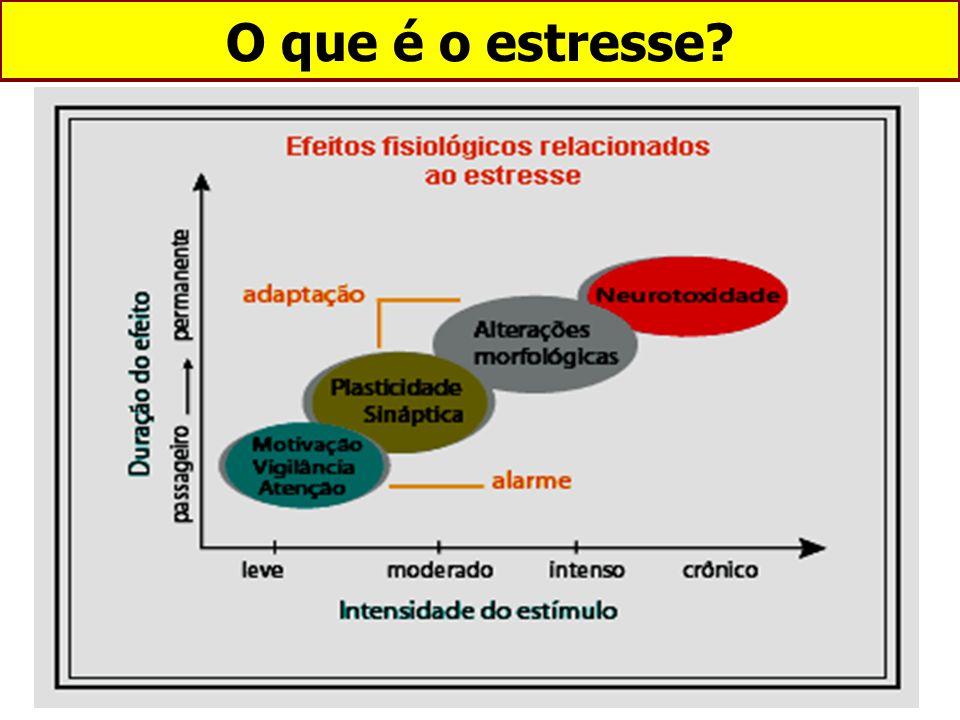 O que é o estresse